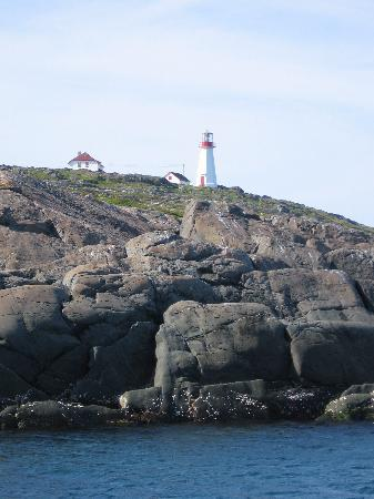 Quirpon Lighthouse Inn: Approaching Quirpon from boat