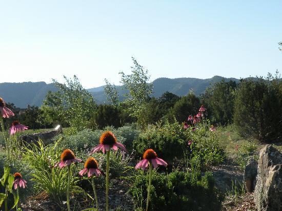Four Seasons Resort Rancho Encantado Santa Fe: Great location for me take scenic photographs