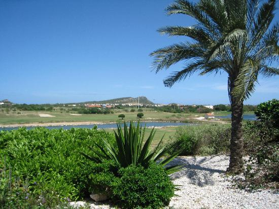 Blue Bay Curaçao Golf & Beach Resort: vue de la terrasse