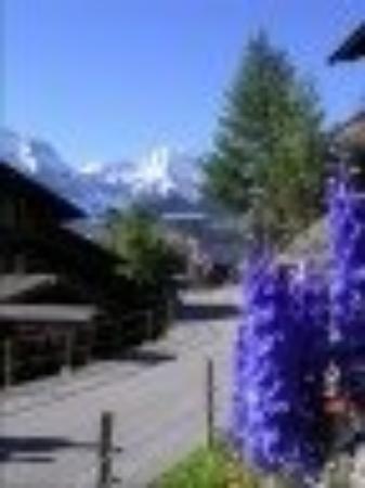 นครวาติกัน, อิตาลี: Murren Switzerland Many visits to this spot!