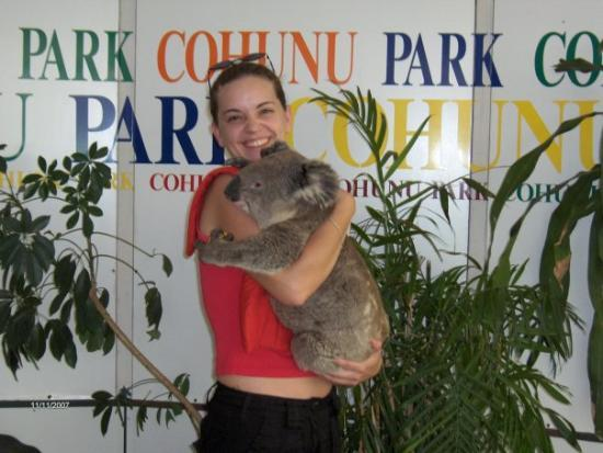 Cohunu Koala Park: Cohunu park...