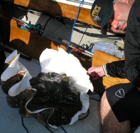กอโรร์, ปาเลา: Friday April 7 2006 The Guamanian Sir Sean McKeever & The Giant Clam