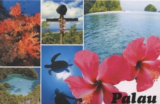 กอโรร์, ปาเลา: Discovery Tours & TBS Car Rental