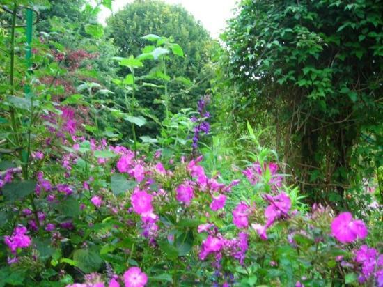 สวนและบ้านของเคลาด์โมเนท์: Monet's garden