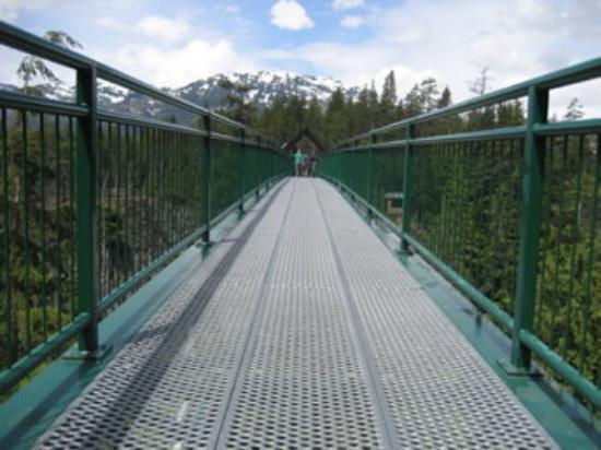 วิสต์เลอร์, แคนาดา: Bungee spot at Whistler Mountain, B.C.