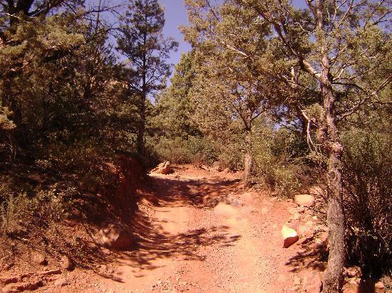 Barlow Jeep Rentals: Sedona Red Rock Jeeping