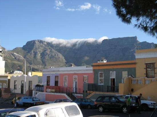 Le Cap, Afrique du Sud : Montagne de la Table.