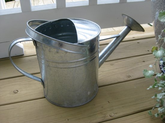 Brierley Hill Bed and Breakfast: Plant waterer 2