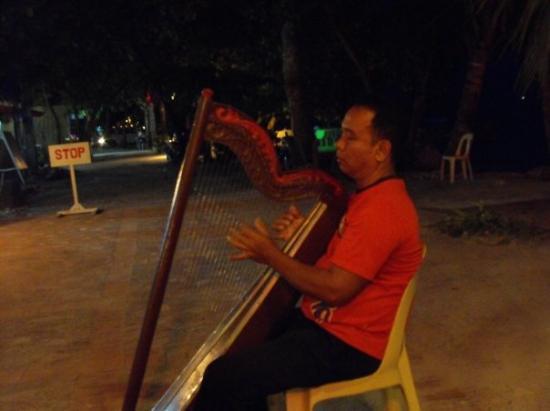 เกาะปังเลา , ฟิลิปปินส์: nightly harpest
