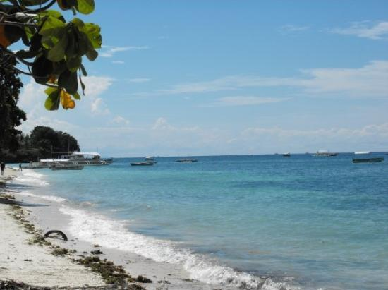 Panglao Island, ฟิลิปปินส์: just another beauty day