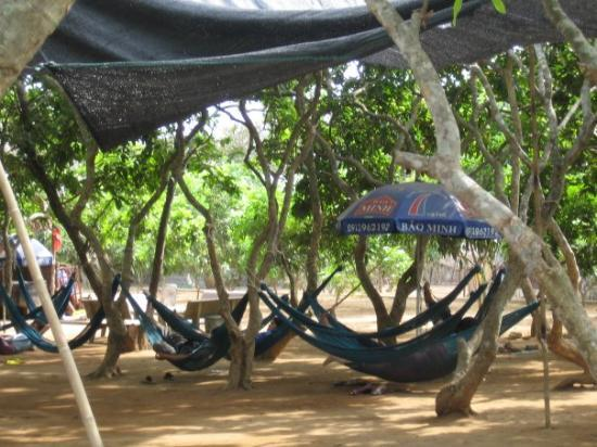 "โฮจิมินห์ซิตี, เวียดนาม: There are quite a few hammock ""parks"" where you pay a fee and just go sit in a hammock and chill"