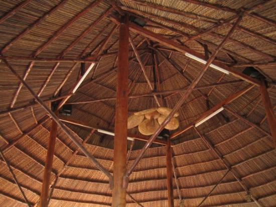 โฮจิมินห์ซิตี, เวียดนาม: Everything in Ben Tre is made from the coconut tree