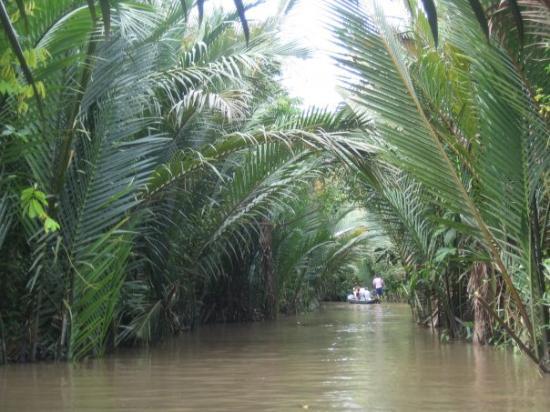 โฮจิมินห์ซิตี, เวียดนาม: The view from our lil canoe