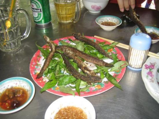 โฮจิมินห์ซิตี, เวียดนาม: Mudskippers!