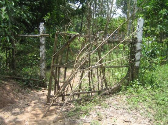 โฮจิมินห์ซิตี, เวียดนาม: Gate out back heading to the burial grounds