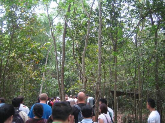 โฮจิมินห์ซิตี, เวียดนาม: On the Cu Chi trail