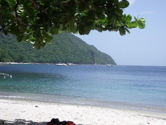 Cosol Tours: the beach between the Pitons