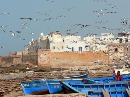 เอสเซาอิรา, โมร็อกโก: Essaouira from the port.