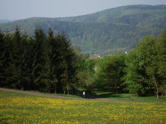 บาดเฮร์สเฟลด์, เยอรมนี: view from the hill