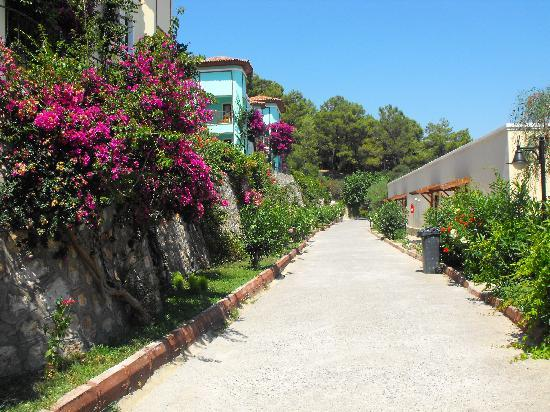Caria Holiday Resort: The walkway to rooms