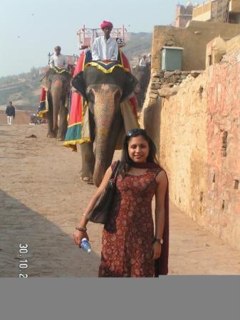 ชัยปุระ, อินเดีย: India for you...Elephants in the background