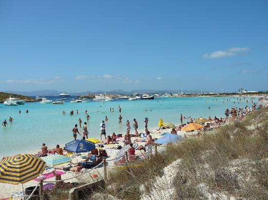 Hotel Voramar: Playa Illetes
