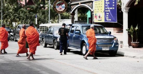 กะทู้, ไทย: Munkar på promenad.