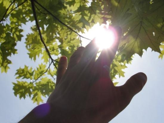 โอเดสซา, ยูเครน: My hand