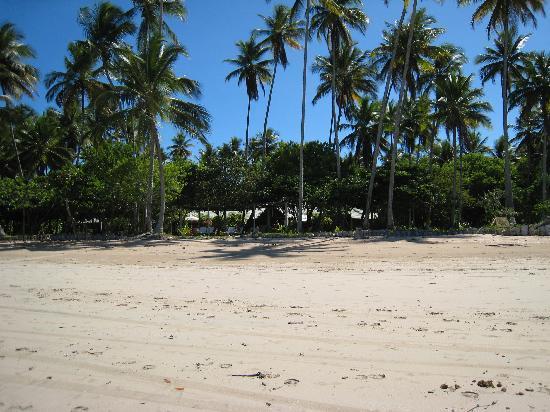 Anima Hotel: Hotel from the shore