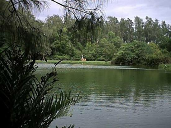มอมบาซา ภาพถ่าย
