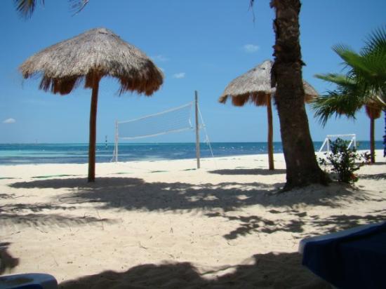 Oasis Palm: Notre plage au bas de l'hôtel...