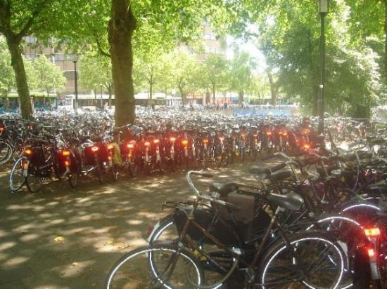 อูเทรคต์, เนเธอร์แลนด์: Encore un garage à Vélo !