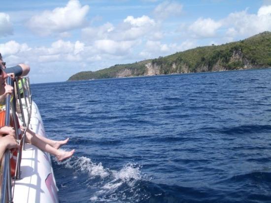 แคสตรีส์, เซนต์ลูเซีย: St Lucia coast