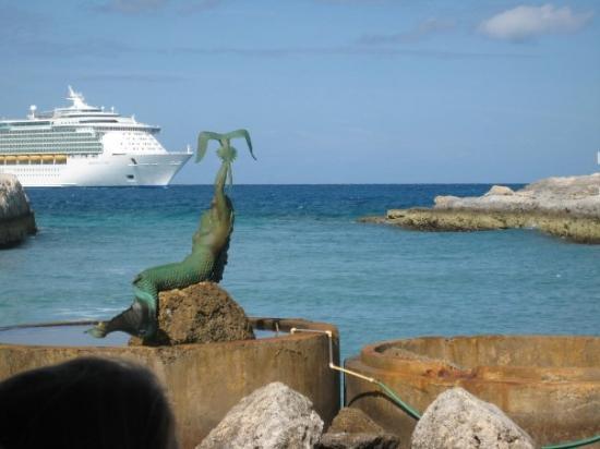 Green Turtle Cay ภาพถ่าย
