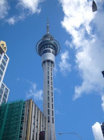 สกายทาวเวอร์: Auckland