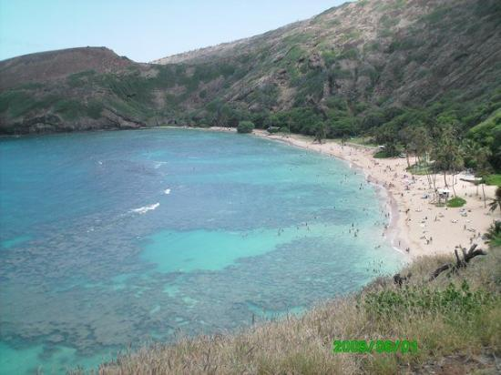 Hanauma Bay Nature Preserve: Wednesday - The boys get off of school early. Ivan and Debbie both had to work. I went with the