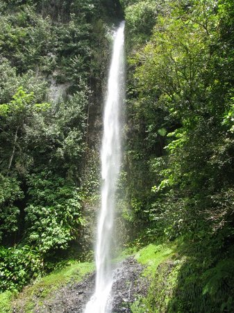 Dominika: Middleham Falls, Dominica. It took over an hour to hike to this beauty. 300 Ft tall deep in the