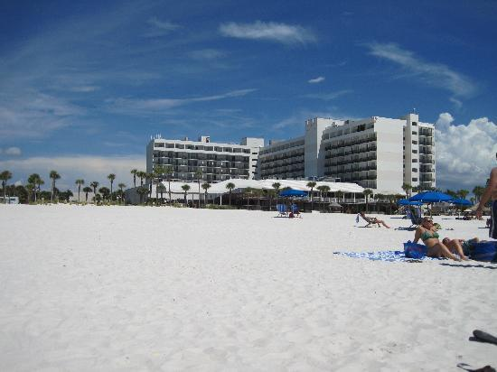 Hilton Clearwater Beach Resort & Spa: Our hotel on the beach