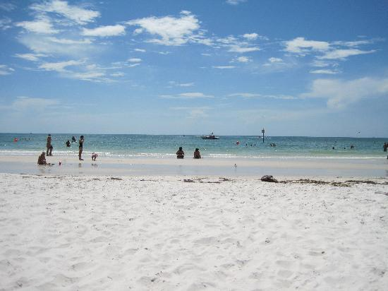 Hilton Clearwater Beach Resort & Spa: the beach in front of the hotel