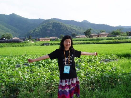 เซบูซิตี, ฟิลิปปินส์: Korea