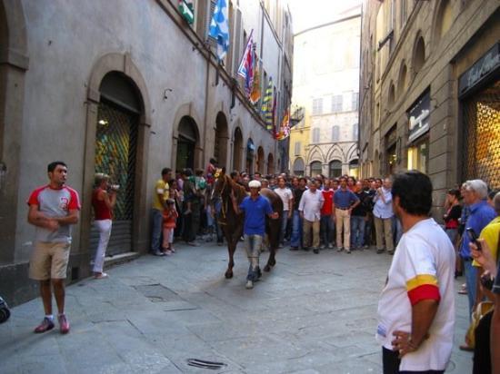 เซียนา, อิตาลี: Siena - August 2006
