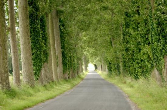 Saint-Valery-sur-Somme, ฝรั่งเศส: the drive into the camp