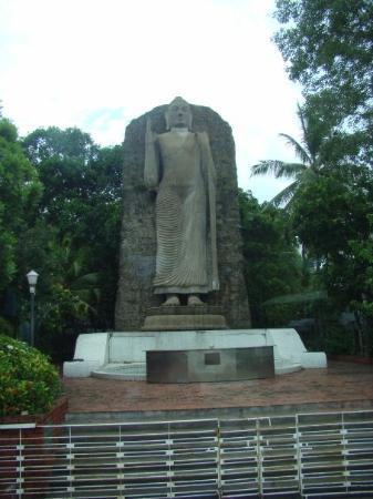 โคลัมโบ ภาพถ่าย