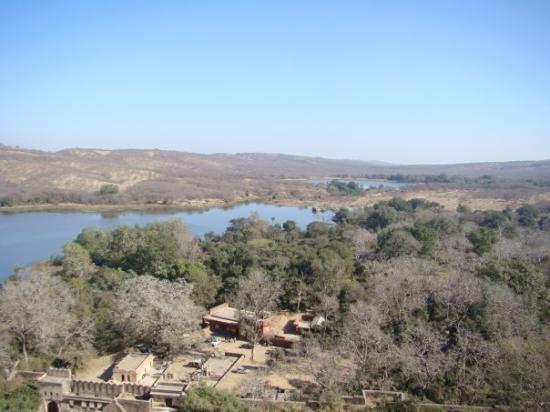 Ranthambore National Park ภาพถ่าย