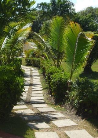 ไลฟ์สไตล์ ทรอปิคอลบีช รีสอร์ท & สปา: There were many paths to get from one section of the resort to the other