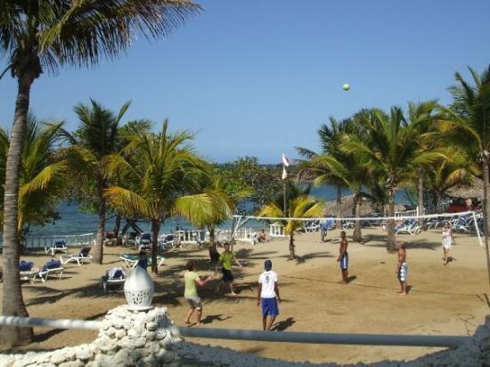 """ไลฟ์สไตล์ ทรอปิคอลบีช รีสอร์ท & สปา: The volleyball """"court"""" by the beach"""