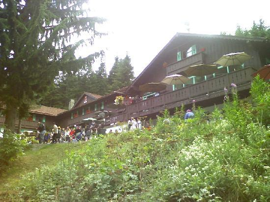 Crystal Mountain, WA: Summer Mt Bike Race at The Alpine Inn