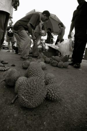 กูชิง, มาเลเซีย: Local Fruit...Durian Kampong/Hutan