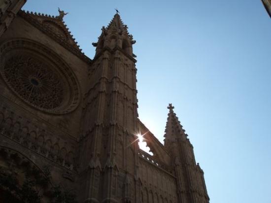 ปัลมาเดมายอร์กา, สเปน: Palma Cathedral (Le Seu)