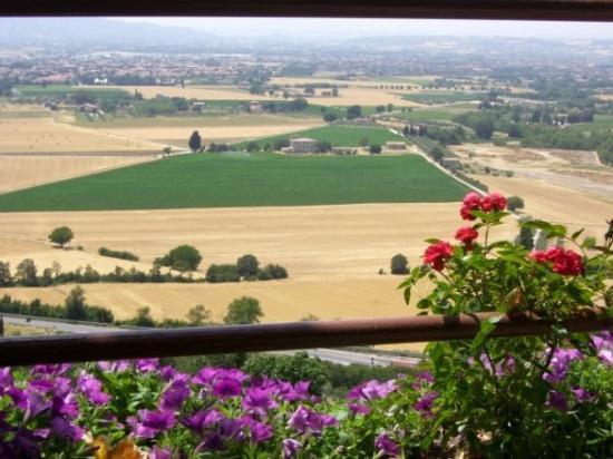 อัสซีซี, อิตาลี: View from our restaurant table overlooking the valley below Assisi